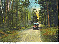 Five Mile Drive in Dinsmoor Woods, Keene, New Hampshire (4352170728).jpg
