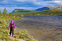Flakkshøa-Walking along Lake Furusjøen in the Kvamsfjella Mountains in Norway.jpg