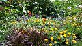 Fleur54.jpg