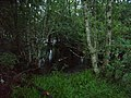 Flooded River Dee at Ballater - panoramio - Yooga.jpg