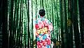 Floral kimono and bamboo (Unsplash).jpg
