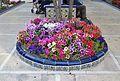 Flors a la Glorieta d'Elx.jpg