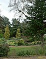 Flower beds and monkey puzzle, Golden Acre Park - geograph.org.uk - 257650.jpg