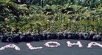 Aloha Drive Lake Havasu City Az