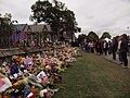 Flowers at the tribute wall.jpg