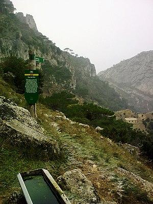 Cardó Massif - Image: Font del Teix Refugi al Fons