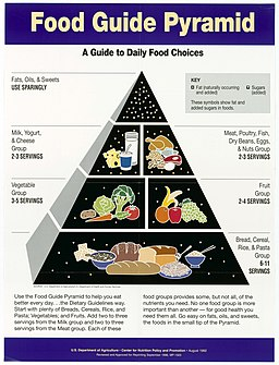 Food Guide Pyramid- A Guide to Daily Food Choices - NARA - 5710010