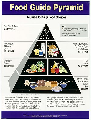 Food choice of older adults - Image: Food Guide Pyramid A Guide to Daily Food Choices NARA 5710010