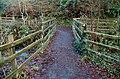 Footbridge, Crawfordsburn Glen (3) - geograph.org.uk - 1690285.jpg