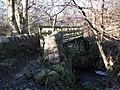 Footbridge over Catton Burn - geograph.org.uk - 635859.jpg