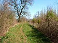 Footpath and county boundary - geograph.org.uk - 467810.jpg