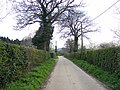 Footpath down country lane - geograph.org.uk - 1245336.jpg