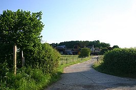 Footpath to Gallowgate Farm and Fenstead End - geograph.org.uk - 195859.jpg