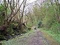 Footpath to Sensicall Park, Oughtibridge - geograph.org.uk - 816757.jpg