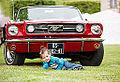Ford Mustang & Loane - Steve.© - (8753483475).jpg