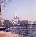 Françoise Foliot - Paris - Cathédrale Notre-Dame 07.jpg