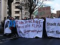 Fridays for Future Frankfurt am Main 08-03-2019 15.jpg