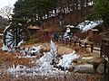 Frozen Water Wheel Seonam Lake Park, Ulsan.JPG