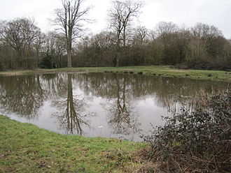 Fryent Country Park - Image: Fryent Country Park Barn Hill Pond