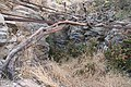 Fuente y Galería de Chavao - panoramio.jpg