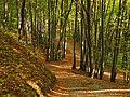 Góra Świętej Anny 016.jpg