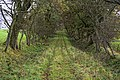 Gallows Hill - geograph.org.uk - 1549056.jpg