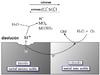 Galvanic corrosion--corrosion galvanica---Corrosion galvanique principe.png