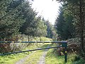 Gated forestry track - geograph.org.uk - 1109043.jpg