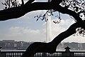 Genève - panoramio (27).jpg