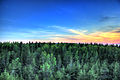 Gfp-michigan-pictured-rocks-national-lakeshore-sunset-over-pine-forest-and-sky.jpg