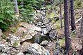 Ghisoni ruisseau d'Alzitone en amont du pont de Canali.jpg
