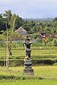 Gianyar-Regency Bali Indonesia Shrine-on-a-paddy-01.jpg