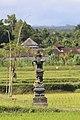 Gianyar-Regency Bali Indonesia Shrine-on-a-paddy-01.jpg