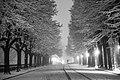 """Giardini """"Le passeggiate""""in inverno.jpg"""