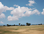 Golf fields 2430.jpg