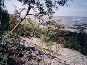 Świętokrzyski National Park - Stone run at Świętokrzyski National Park