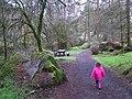 Gortin Glens Forest Park (24) - geograph.org.uk - 1712694.jpg