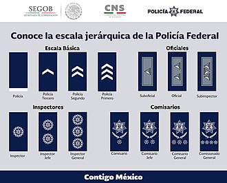 Federal Police (Mexico) - Rank insignia of the Mexican Federal Police.