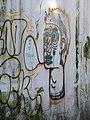Graffiti reacionário (8197300208).jpg