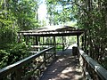 Grand Bay Wetlands Management Area boardwalk 05.JPG