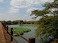 Grande seca de 2014, ponte do Rio Pardo entre Pontal e Cândia (distrito de Pontal). Em outubro de 2014, o Rio Pardo registrou em Ribeirão Preto a marca de 34 centímetros de profundidade, atingindo - panoramio.jpg
