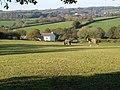 Grazealders - geograph.org.uk - 273269.jpg