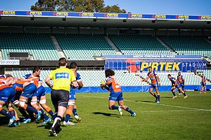 Greater Sydney Rams - Image: Greater Sydney Rams versus Melbourne Rising Round 8 National Rugby Championship (3)