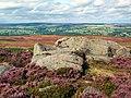 Green Crag, Ilkley Moor - geograph.org.uk - 44780.jpg
