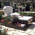 Grob Drazena.jpg