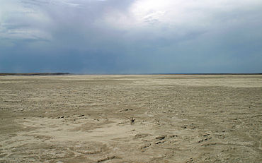 Grulla Salt Lake 2009.jpg