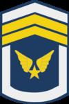 Hạ Sĩ Nhất-Airforce 1.png