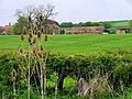 Harsley Grange - geograph.org.uk - 169679.jpg