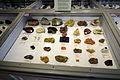 Harvard Museum of Natural History (DerHexer) 2012-07-20 16.jpg