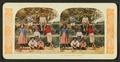 Hawaiian school children, from Robert N. Dennis collection of stereoscopic views.png